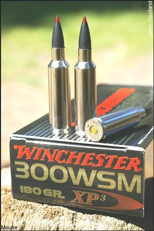 Winchester's new XP3 bullets are available in its new Supreme Elite ammunition brand.