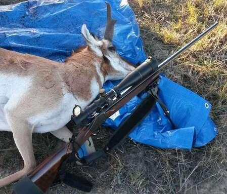 Antelope buck Browning 1885 7mmRM 2014.jpg