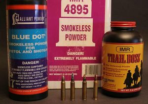 There are two basic kinds of powder charges for reduced loads: small charges of fast-burning handgun/shotgun powders, and larger charges of rifle or specialty powders.