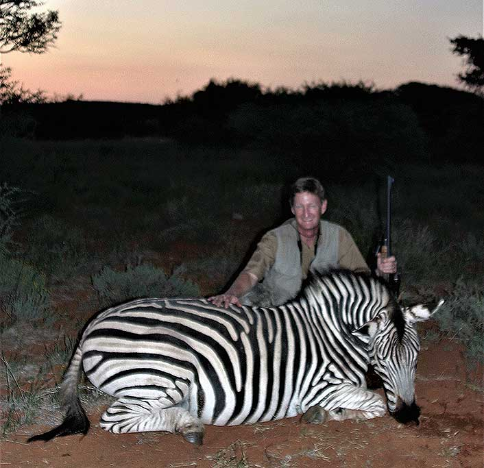 This zebra went 200 yards when shot with a .375 H&H.